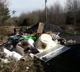 Illegal dumping costs Coillte €2 million over last five years
