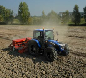 UFU calls for clarity on autumn cereal seed availability