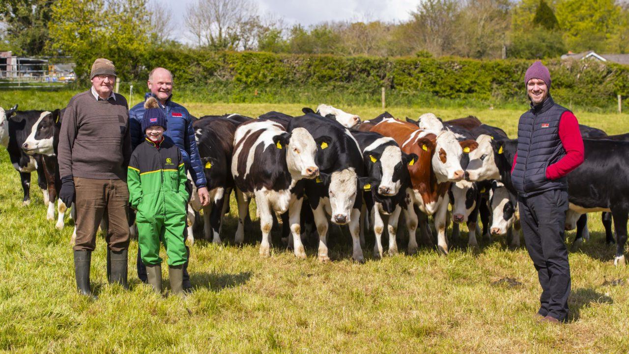 Twenty20 Beef Club 'a perfect fit' for Kilkenny farmer