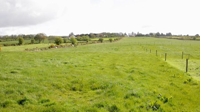 Growth Watch: Critical period for grazing decisions approaching