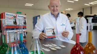 Chanelle Pharma animal health division to create 60 new jobs