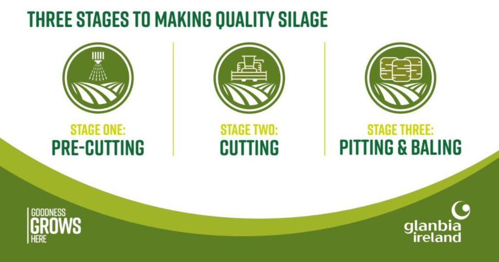quality silage
