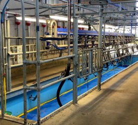 A 14-unit parlour for a start-up 75-cow herd in Co. Wexford