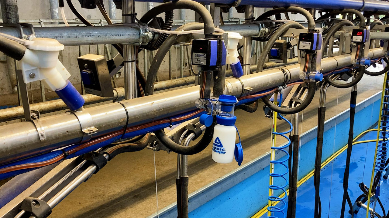 Milk recording, vaccinations and better management key to dealing with new regulations