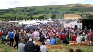 Tinahely Agricultural Show cancelled again due to Covid-19