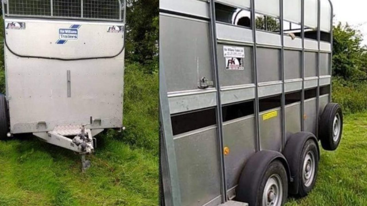 Ifor Williams trailer stolen from Offaly