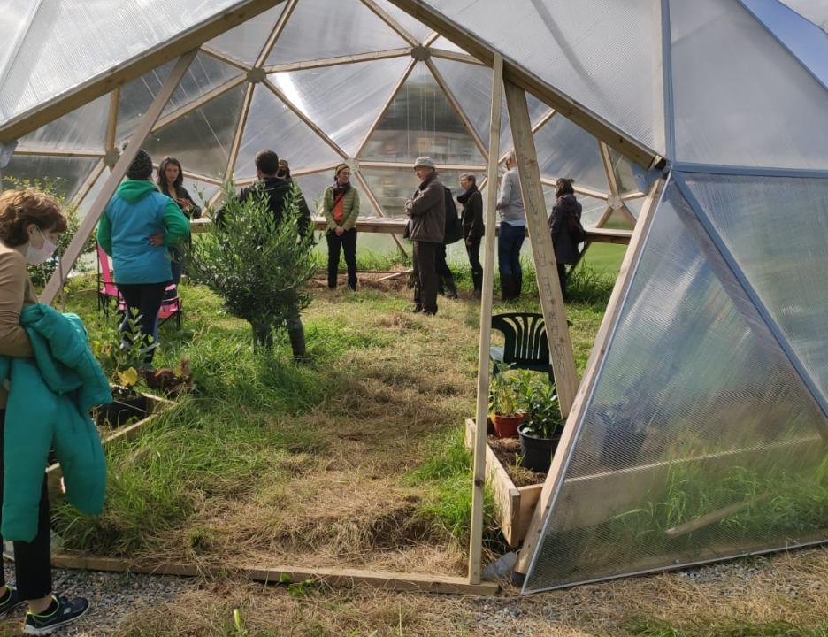 Westmeath farm hosts 'open air life' summer event series