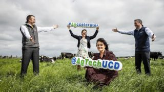 UCD launches new accelerator programme for agtech and foodtech start-ups