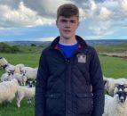 Ulster Wool宣布新发展计划的冠军