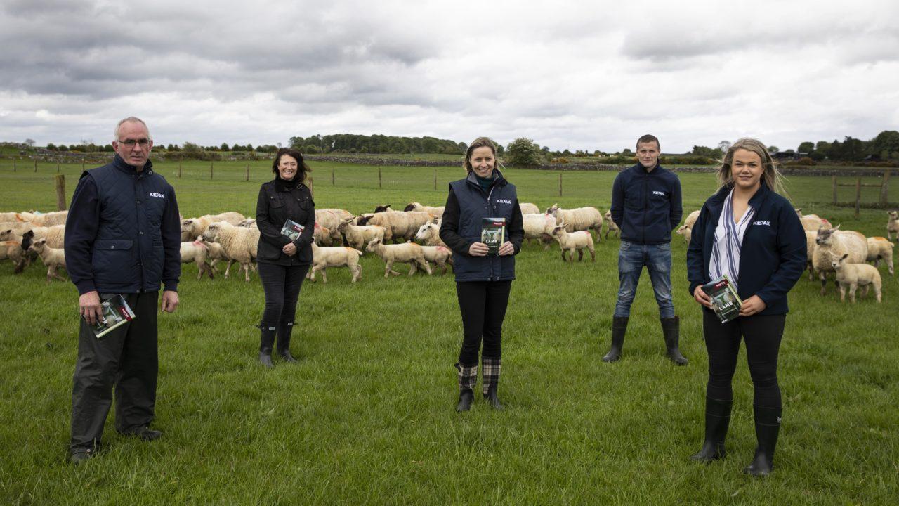Kepak and Supervalu develop 'Lamb Producer Guidelines'