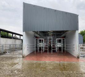 牛奶价格跟踪:由于全球牛奶市场保持强劲,价格上涨