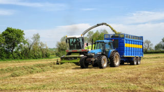 It's time to shift focus to second-cut silage