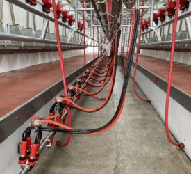 Ensuring your milking machine is working correctly