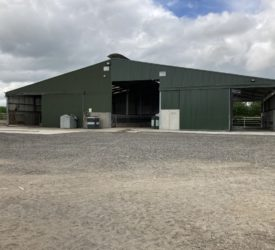 Buildings Focus: Creating a carbon copy of an existing suckler unit in Co. Tipperary
