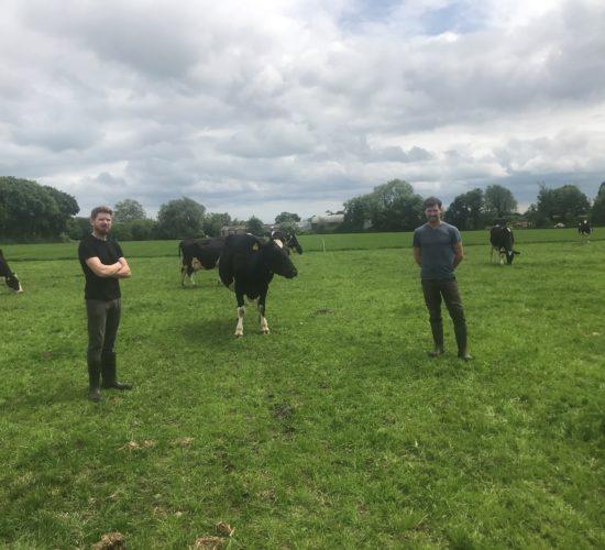 betway客户端乳制品焦点:较少的奶牛,少量牛奶,更多的利润在Co. Louth