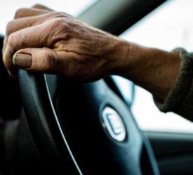 新的延期宣布驾驶许可证到期日期