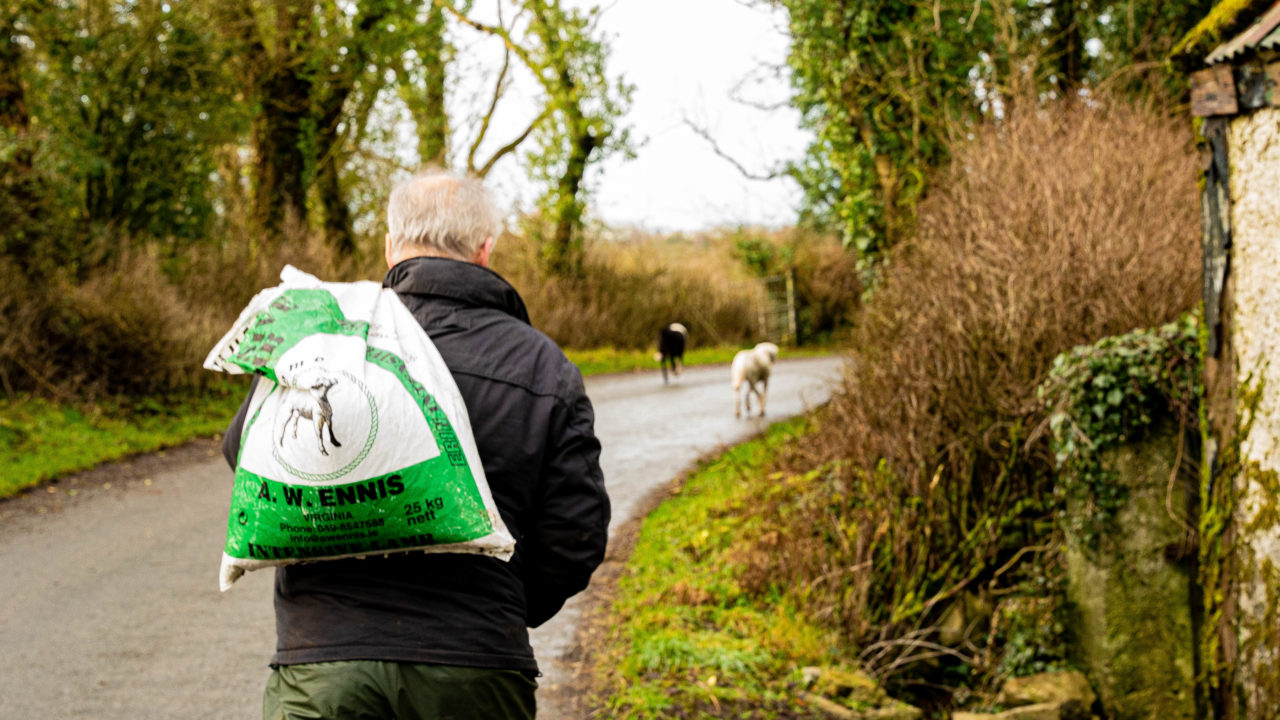 Farm safety: Preventing injury and ill health to older farmers