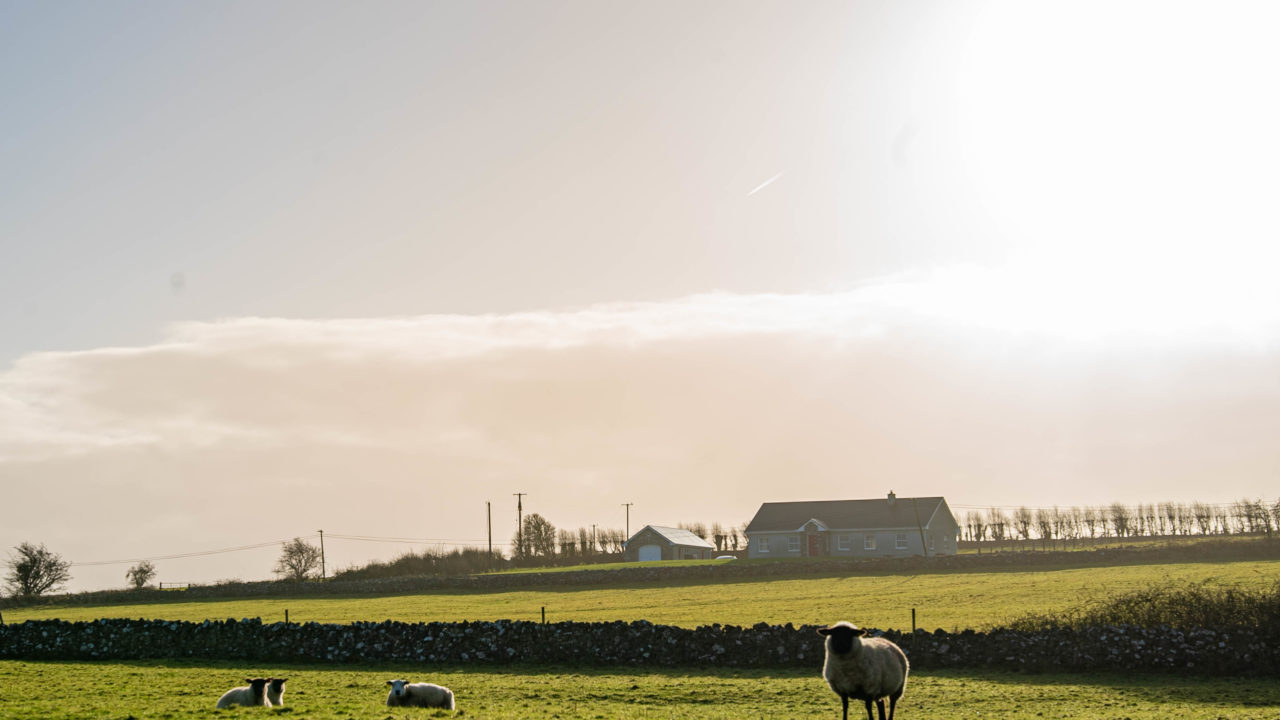 Rural Ireland 'under threat', 'targeted resources' needed in budget