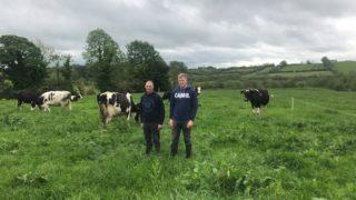 Dairy Focus: 'Winter milk production suits our farm'