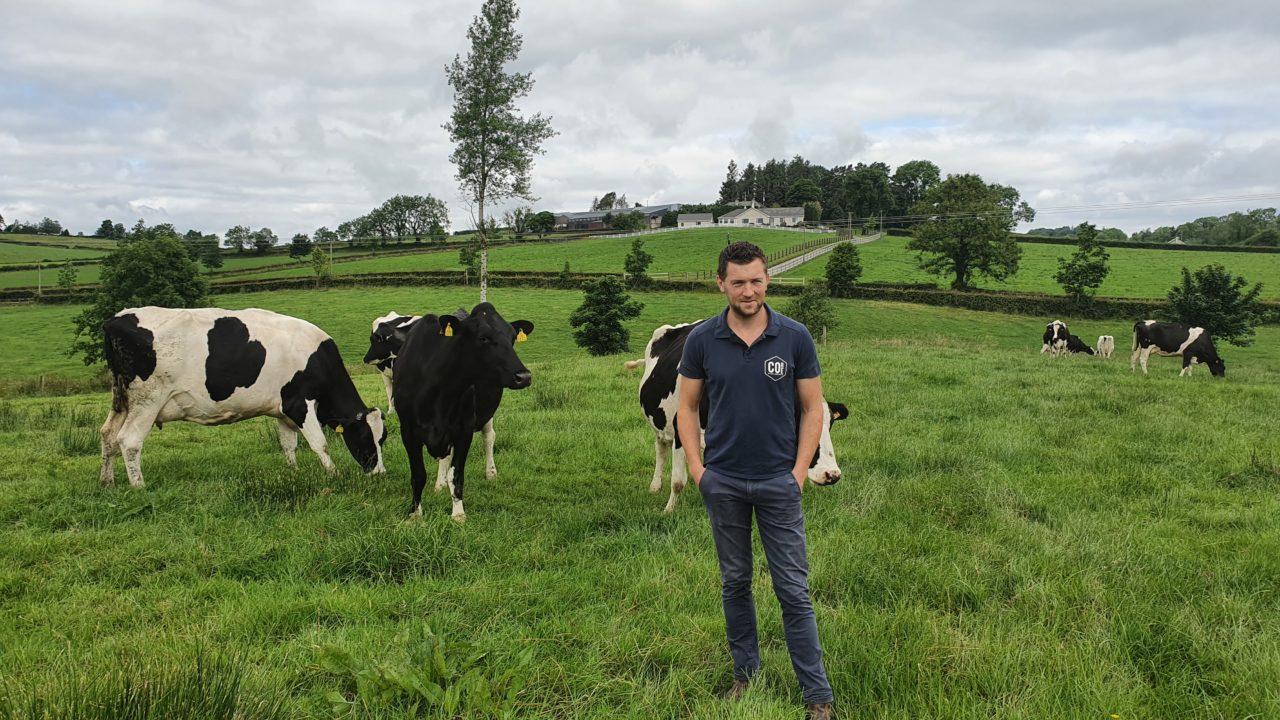Udder health antibiotic use halved at Irish dairy farm