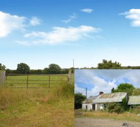 Ferns roadside holding with derelict farmhouse for auction