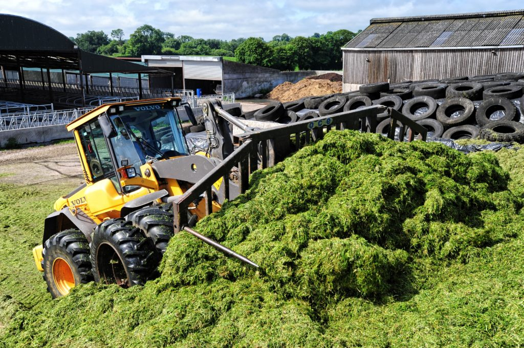 Pit silage at Salesian College