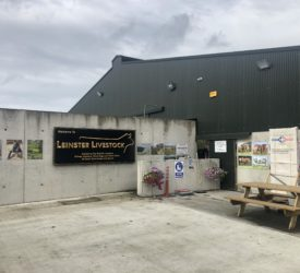 Beef Focus: See inside 'state -of-the-art' Longford cattle dealer's yard