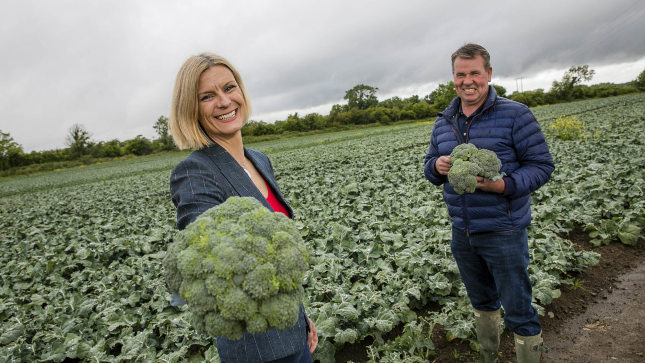 Bord Bia encourages people to 'add one more fruit and veg'