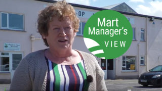'Store lambs in strong demand' at Tuam Mart