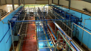 16-unit parlour, handling area and 70 cubicles under the 1 roof