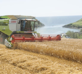 Pics: Harvest season motors on with top cutting conditions