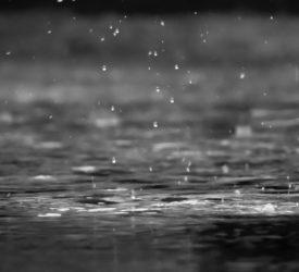 雷雨和疫病警报到位