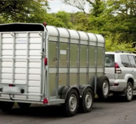 What licence do I need to tow my trailer on the road?
