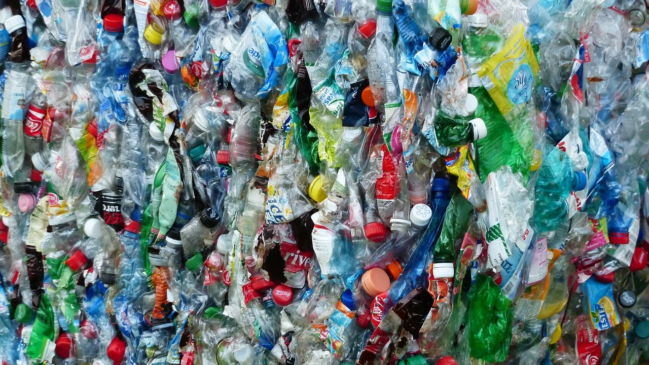 Calls for NI to invest in technology to reduce methane emissions from waste