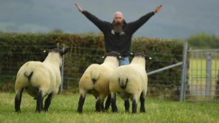 The Big Boy Ram Sale set to see 180 rams up for grabs this Friday
