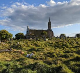 Historic graves from the 1800s uncovered by sheep in Cork