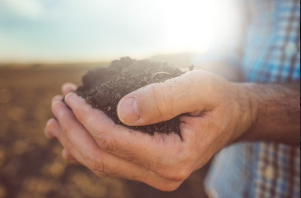 soilguard
