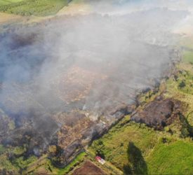 Pics: Emergency services tackle 2 large gorse fires