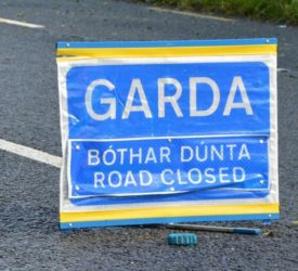 3 cows killed in road incident in Tipperary
