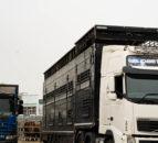 部长敦促农业企业为英国贸易变化做好准备