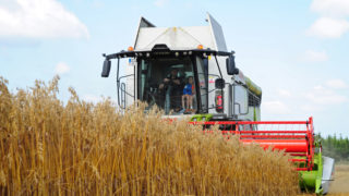 Harvesting oats with Claas and Valtra