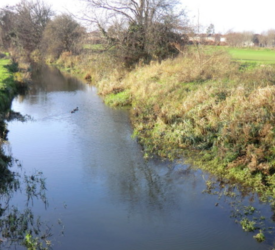 Goals for agri set out in new plan to improve Ireland's water quality