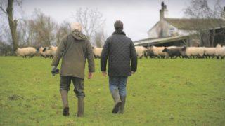 Farmer's view on avoiding pitfalls of an 'inheritance nightmare'