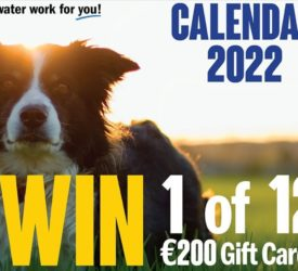 Working dog calendar comp: Will your pup make the cut?