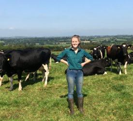 betway客户端专注乳品业:在租赁的农场上开辟一条进入乳品业的道路