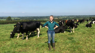 Dairy Focus: Paving a path into dairying on a leased farm