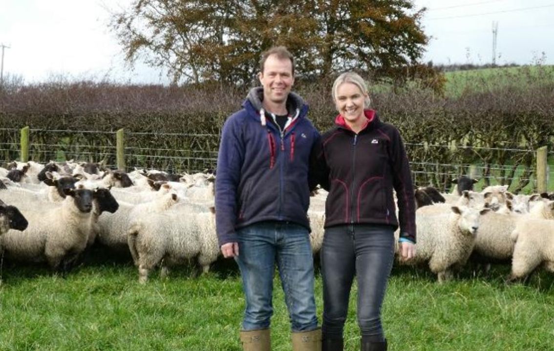 Fancy becoming one of NI's new Sheep Technology Demonstration Farms?