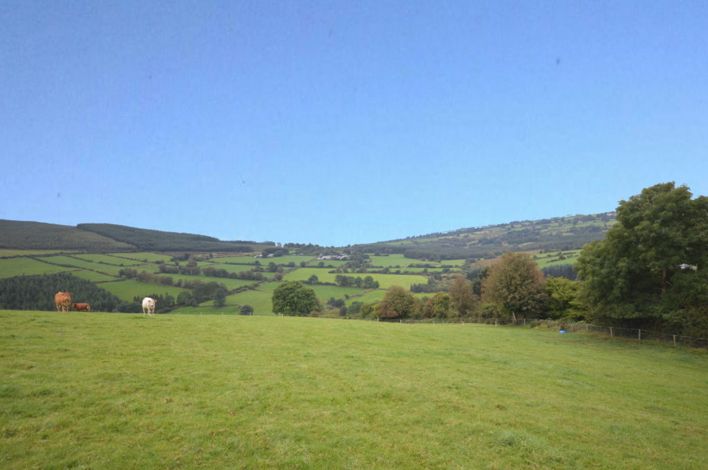 Wicklow farms