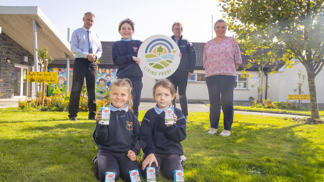 Avonmore switches to paper straws on School Milk Scheme 2021