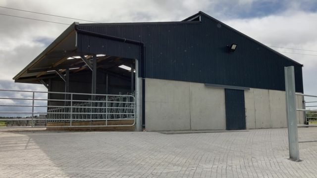 Buildings Focus: Erecting a suckler shed with a creep area over an existing slatted tank
